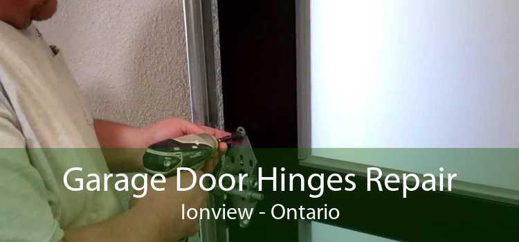 Garage Door Hinges Repair Ionview - Ontario