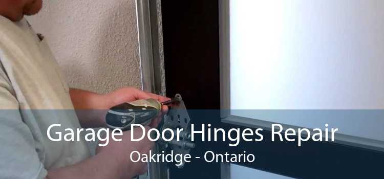 Garage Door Hinges Repair Oakridge - Ontario