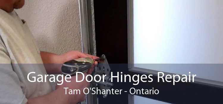Garage Door Hinges Repair Tam O'Shanter - Ontario