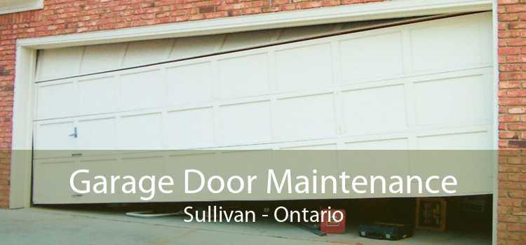 Garage Door Maintenance Sullivan - Ontario