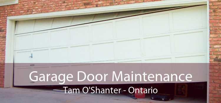 Garage Door Maintenance Tam O'Shanter - Ontario