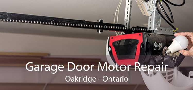 Garage Door Motor Repair Oakridge - Ontario