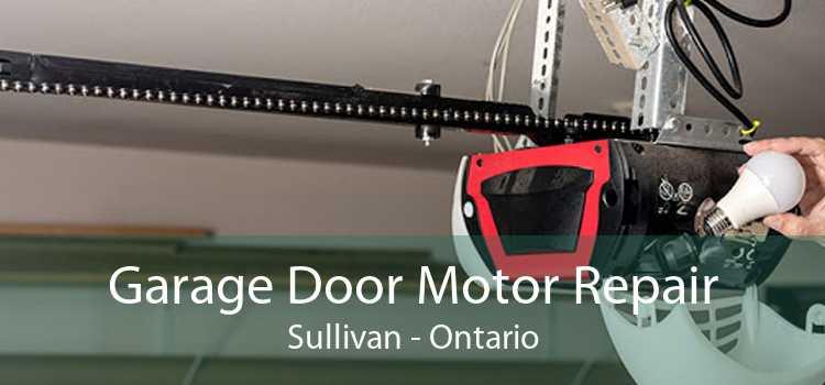 Garage Door Motor Repair Sullivan - Ontario