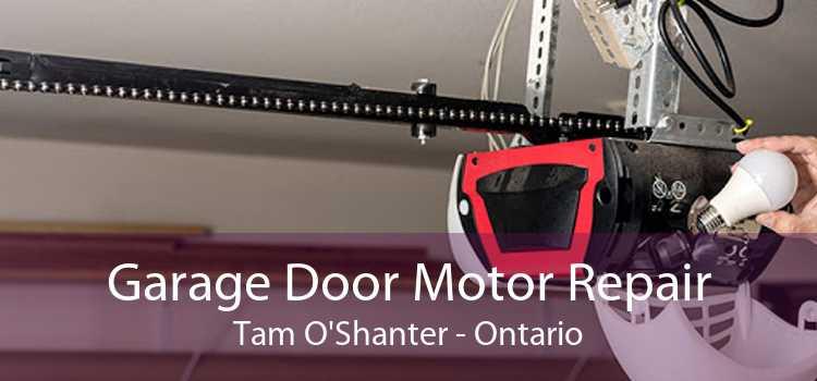 Garage Door Motor Repair Tam O'Shanter - Ontario