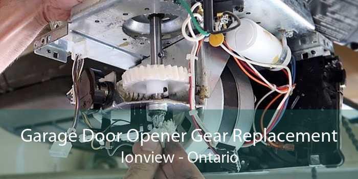 Garage Door Opener Gear Replacement Ionview - Ontario