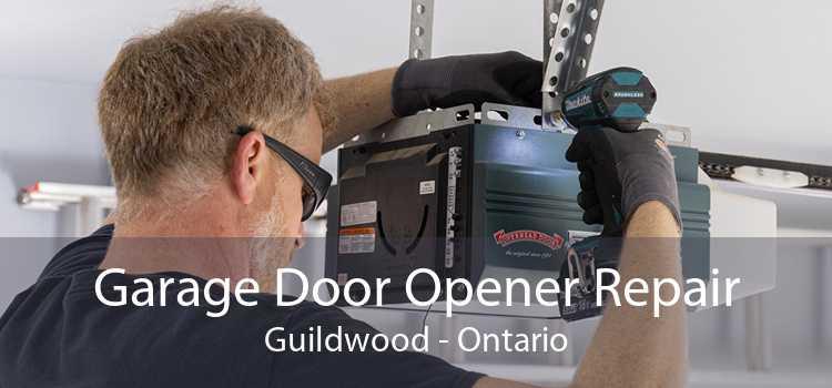 Garage Door Opener Repair Guildwood - Ontario