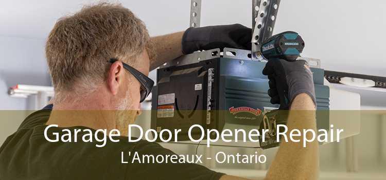 Garage Door Opener Repair L'Amoreaux - Ontario
