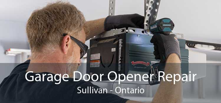 Garage Door Opener Repair Sullivan - Ontario