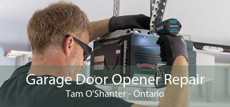 Garage Door Opener Repair Tam O'Shanter - Ontario