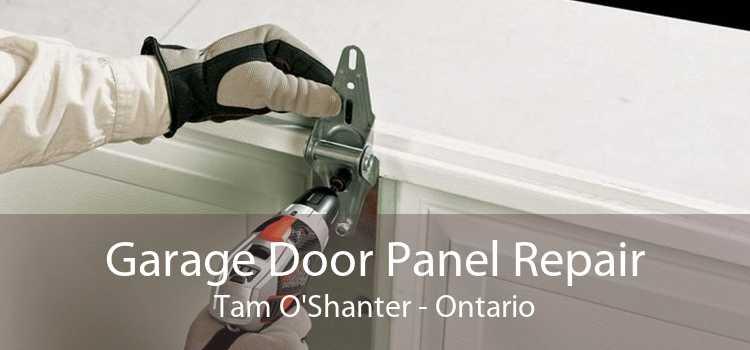 Garage Door Panel Repair Tam O'Shanter - Ontario