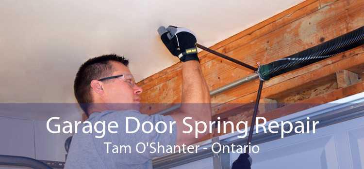 Garage Door Spring Repair Tam O'Shanter - Ontario
