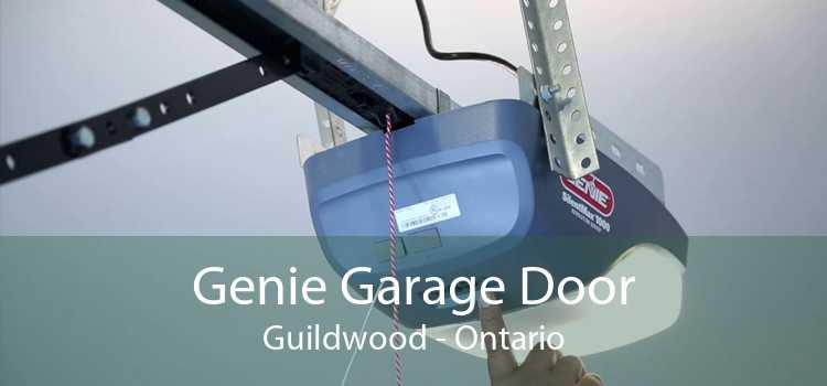 Genie Garage Door Guildwood - Ontario