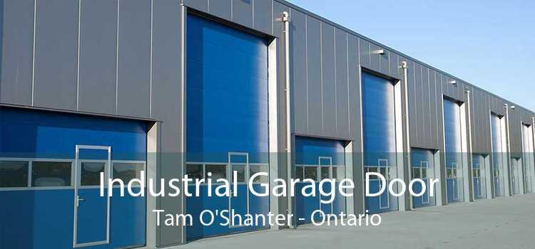 Industrial Garage Door Tam O'Shanter - Ontario