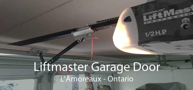 Liftmaster Garage Door L'Amoreaux - Ontario
