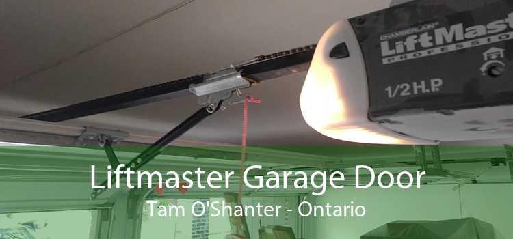 Liftmaster Garage Door Tam O'Shanter - Ontario