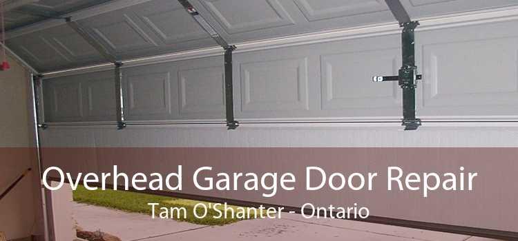 Overhead Garage Door Repair Tam O'Shanter - Ontario