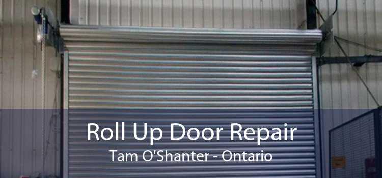 Roll Up Door Repair Tam O'Shanter - Ontario